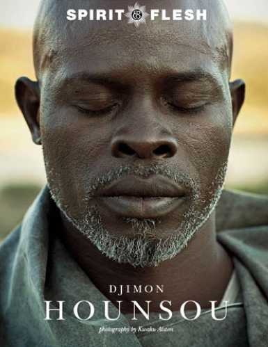 The Mystery Issue, Djimon Hounsou